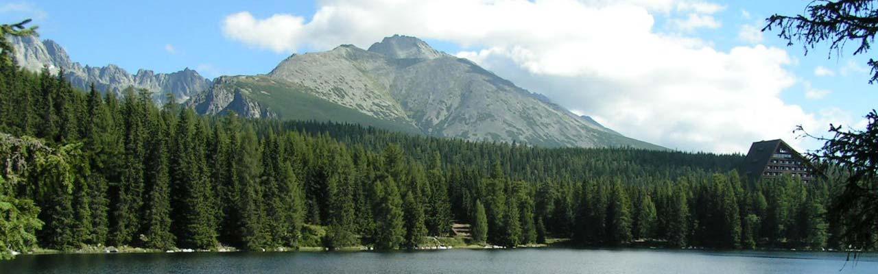 Ubytovanie v priváte Vila Lesana, Vysoké Tatry, Nová Lesná, Podhorie. Útulne ubytovanie v krásnom priváte priamo pod Tatrami.